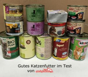 im-test-hochwertiges-katzenfutter-redaktion