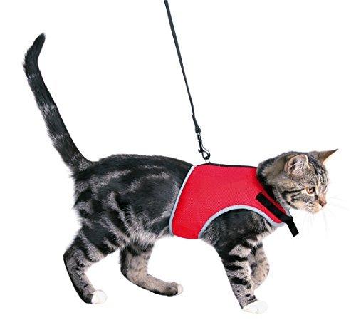 XCat-Katzen-Garnitur-mit-leine